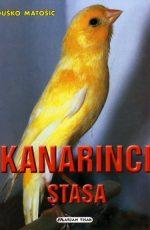 Kanarinci stasa